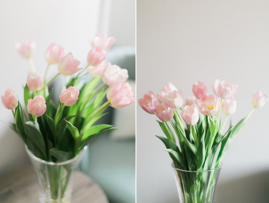 tulips_spread 5